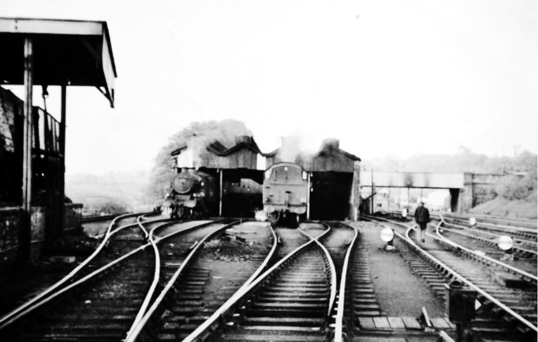 shed 1962